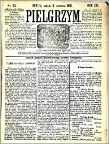 Pielgrzym, pismo religijne dla ludu 1881 nr 65