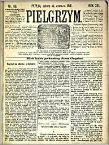 Pielgrzym, pismo religijne dla ludu 1881 nr 68