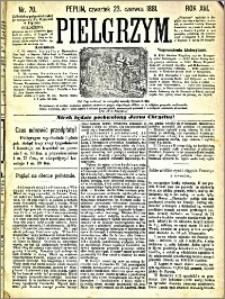 Pielgrzym, pismo religijne dla ludu 1881 nr 70
