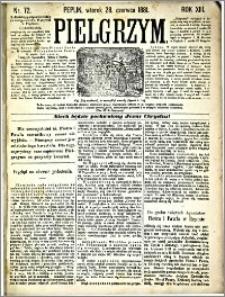 Pielgrzym, pismo religijne dla ludu 1881 nr 72