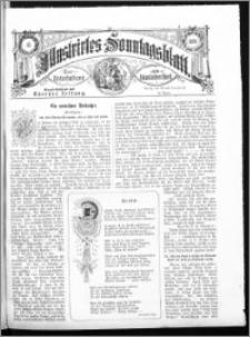Illustrirtes Sonntags Blatt 1881, nr 45