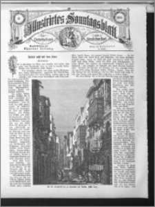 Illustrirtes Sonntags Blatt 1884, nr 17