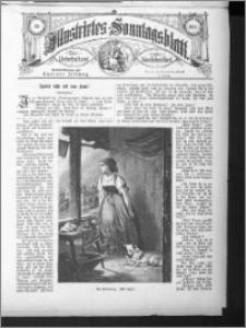 Illustrirtes Sonntags Blatt 1884, nr 20