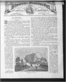Illustrirtes Sonntags Blatt 1884, nr 41