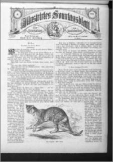 Illustrirtes Sonntags Blatt 1885, nr 16