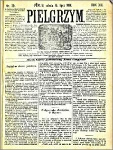 Pielgrzym, pismo religijne dla ludu 1881 nr 79