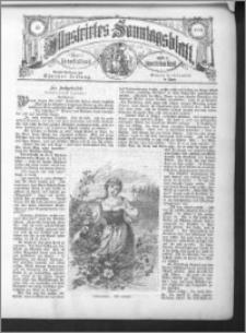 Illustrirtes Sonntagsblatt 1886, nr 15