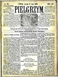 Pielgrzym, pismo religijne dla ludu 1881 nr 80