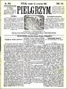 Pielgrzym, pismo religijne dla ludu 1881 nr 104