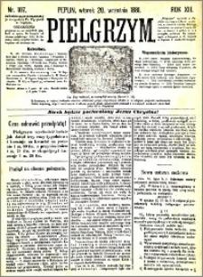 Pielgrzym, pismo religijne dla ludu 1881 nr 107