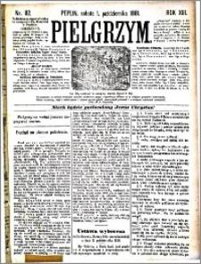 Pielgrzym, pismo religijne dla ludu 1881 nr 112