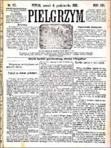 Pielgrzym, pismo religijne dla ludu 1881 nr 113