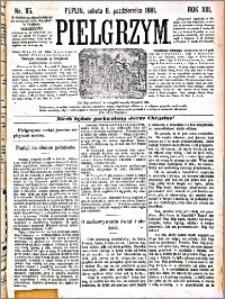 Pielgrzym, pismo religijne dla ludu 1881 nr 115