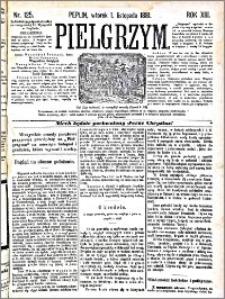 Pielgrzym, pismo religijne dla ludu 1881 nr 125