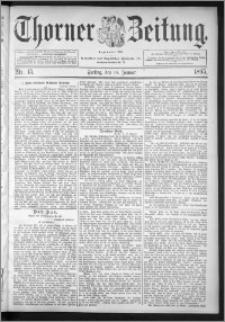 Thorner Zeitung 1895, Nr. 15