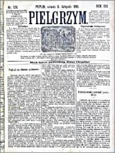 Pielgrzym, pismo religijne dla ludu 1881 nr 128