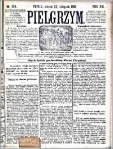 Pielgrzym, pismo religijne dla ludu 1881 nr 134