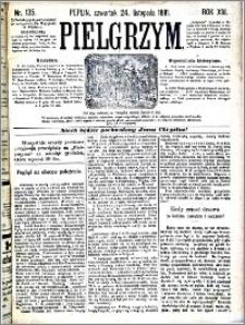 Pielgrzym, pismo religijne dla ludu 1881 nr 135