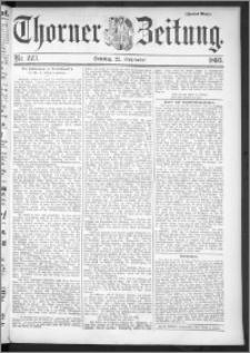 Thorner Zeitung 1895, Nr. 223 Zweites Blatt