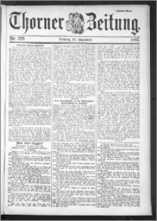 Thorner Zeitung 1895, Nr. 229 Zweites Blatt