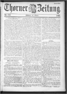 Thorner Zeitung 1895, Nr. 249 Zweites Blatt