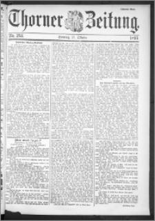 Thorner Zeitung 1895, Nr. 253 Zweites Blatt