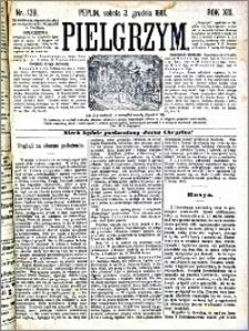 Pielgrzym, pismo religijne dla ludu 1881 nr 139