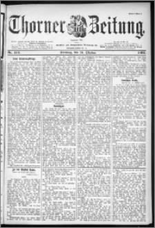 Thorner Zeitung 1899, Nr. 243 Erstes Blatt