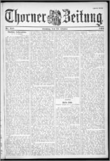 Thorner Zeitung 1899, Nr. 249 Zweites Blatt