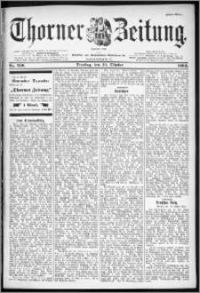 Thorner Zeitung 1899, Nr. 250 Erstes Blatt