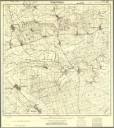 Grupenhagen 318 [Neue Nr 1565] (2)