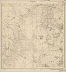 Sageritz 322 [Neue Nr 1569]