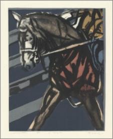 Jeździec VIII