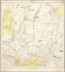 Kulsow 381 [Neue Nr 1667](1)