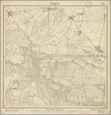 Polajewo 1713 [Neue Nr 3266]