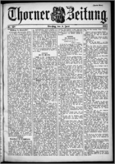 Thorner Zeitung 1901, Nr. 128 Zweites Blatt