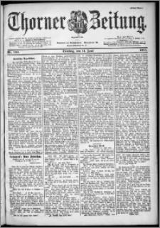 Thorner Zeitung 1901, Nr. 134 Erstes Blatt