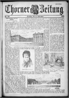 Thorner Zeitung 1901, Nr. 218 Zweites Blatt