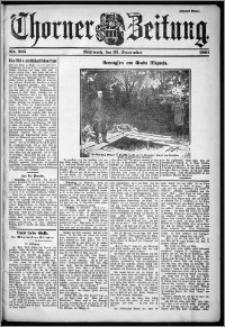 Thorner Zeitung 1901, Nr. 225 Zweites Blatt