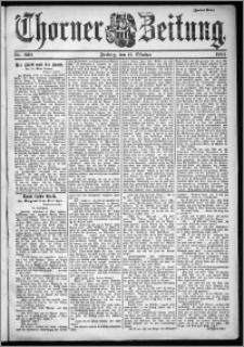 Thorner Zeitung 1901, Nr. 239 Zweites Blatt