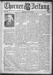 Thorner Zeitung 1901, Nr. 242 Zweites Blatt
