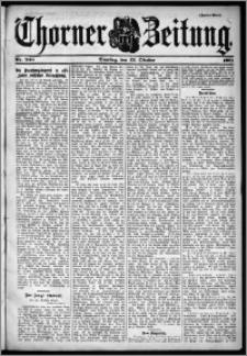 Thorner Zeitung 1901, Nr. 248 Zweites Blatt