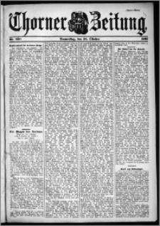 Thorner Zeitung 1901, Nr. 250 Zweites Blatt