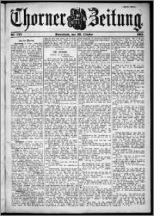 Thorner Zeitung 1901, Nr. 252 Zweites Blatt