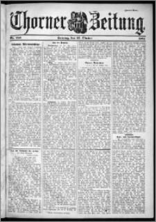 Thorner Zeitung 1901, Nr. 253 Zweites Blatt