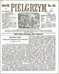 Pielgrzym, pismo religijne dla ludu 1875 nr 23