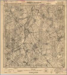 Schönbruch 1691