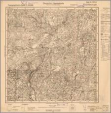 Poscheschupe 16104(2)