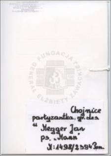 Megger Jan