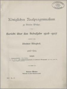 Bericht über das Schuljahr 1906-1907
